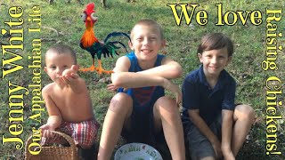 Kids raising chickens