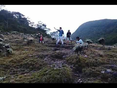 keindahan-lembah-surya-kencana-(gunung-gede)