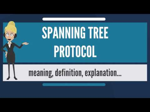 What is SPANNING TREE PROTOCOL? What does SPANNING TREE PROTOCOL mean?