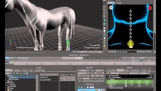 Риггинг лошади в MotionBuilder