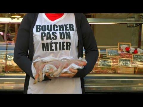 Protestos em França pela defesa dos animais