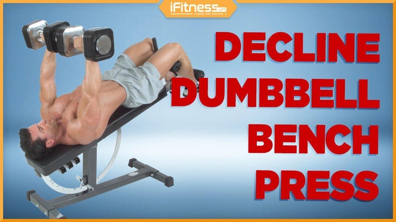 Decline Dumbbell Bench Press | Bài tập cơ ngực dưới bằng tạ đôi | iFitness.vn