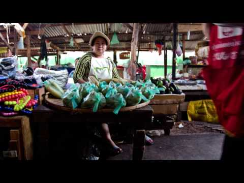 Profiting from organic growth in rural Laos