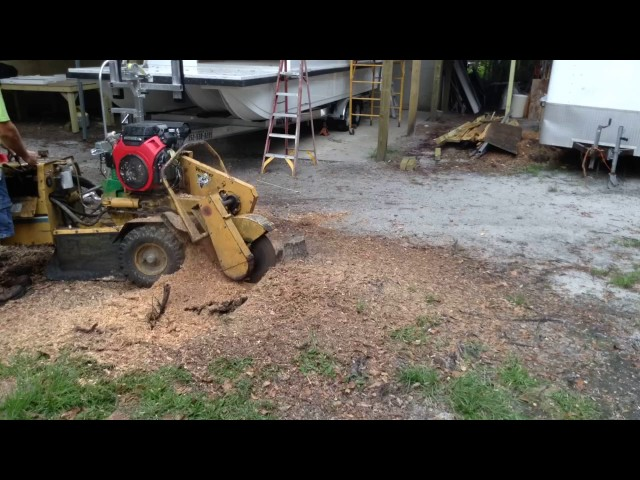 Stump grinder Vermeer 222 oak time-lapse