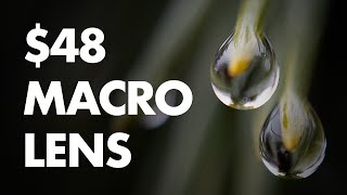 How to Build a $48 Macro Lens