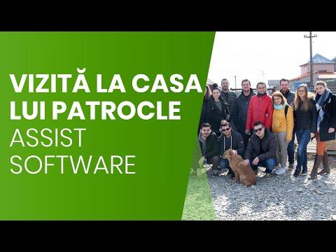 """Povestea cățeilor din adăpostul """"Casa lui Patrocle""""   ASSIST Software"""