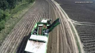 Kopanie ziemniaków w Farm Frites