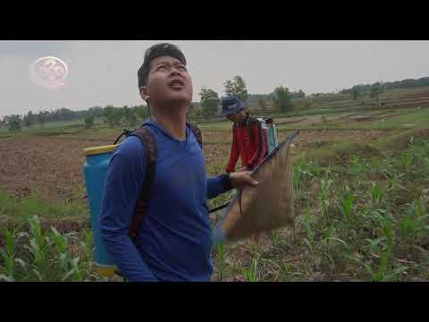 DiTinggal Istri Keluar Negeri Suami Tega Merusak Keperawanan Anak Tirinya - Film Pendek Motivasi