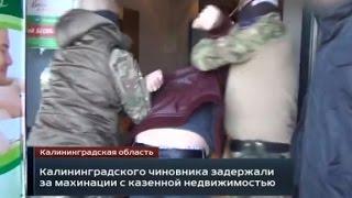 Калининградская область  Россия 1  программа Вести  Дежурная часть  выпуск от 29 04 2015 года   Моше