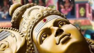 Murugan Tiruvarul முருகன் திருவருள்- Pachai Mayil