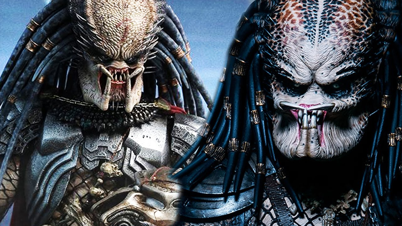 Predator Hierarchy Explained The Yautja Code Of Honor Explained Why Do Predators Hunt