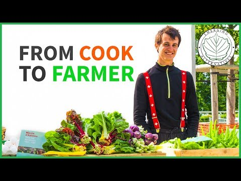 From Cook to Farmer (How to start a Micro Biodynamic Farm and be profitable)