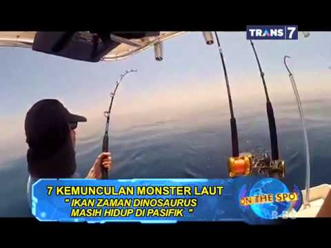 ON THE SPOT - 7 Kemunculan Monster Laut