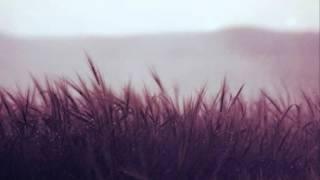 Amon Tobin ~ Sub Tropic