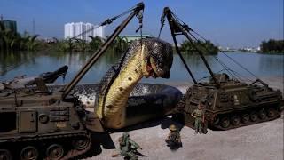 World's Largest Snakes? Anacondas & Pythons