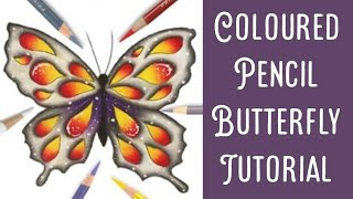 Following a Butterfly Colouring Tutorial from Colourist
