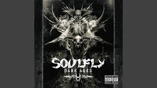 Provided to YouTube by Roadrunner Records Molotov · Soulfly Dark Ag...
