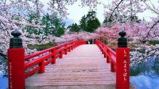 Relax Music Japanese - Relajación Música - Beautiful Flowers - Musica Giapponese ✿⊱╮