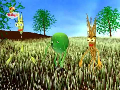 BabyTV Oats and peas english