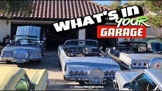 "Whats in your Garage ""BONUS"" Big Fern and friends! (HD/4K)"
