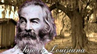 Walt Whitman/ Leaves of Grass #4: Calamus