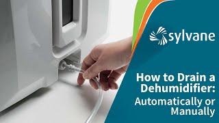 How to Drain a Dehumidifier Automatically | Sylvane