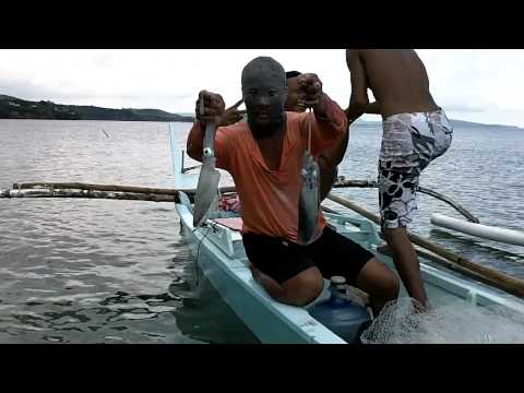 Thumbnail: Fishermen catching squids