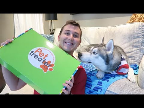 Pet Treater Unboxing || July 2016
