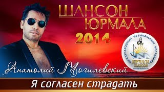Анатолий Могилевский - Я согласен страдать (Шансон - Юрмала 2014)