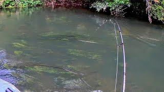 Рыбалка в августе на голавля и щуку 2021