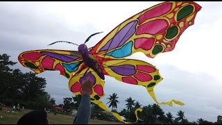 banog banog festival 2014 - kite competitions Tanjay City Negros Oriental