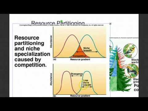 Community Ecology Part 2