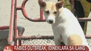 UB: Rabies outbreak, idineklara sa ilang lugar sa Negros Occidental