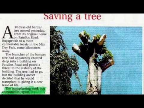 News paper article about tree transplantation work at Chennai and Bangalore.