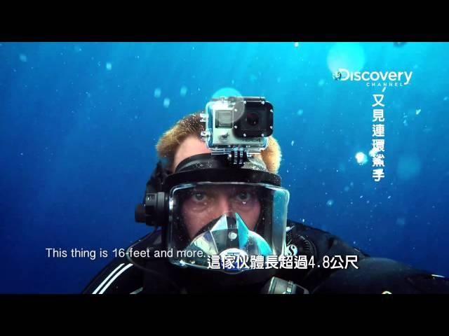 又見連環鯊手 003 瓜達魯佩是東太平洋巨型大白鯊聚集的地方 HD MP4檔