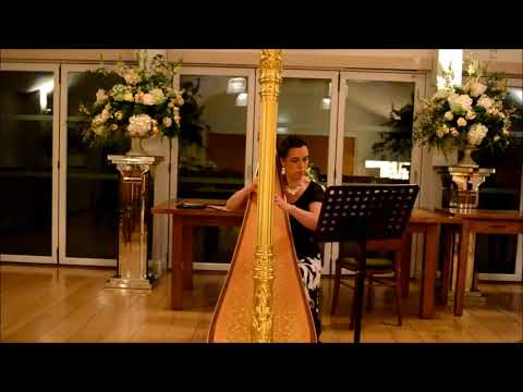 Pachelbel's Canon in D by Welsh Harpist W14