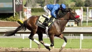 Whose going to win the 2016 KY Derby?