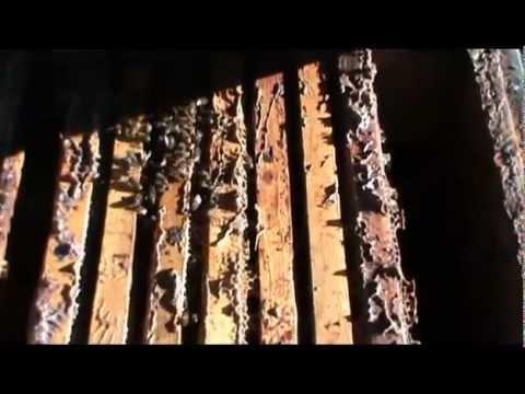 Видео уральские пельмени про дедов морозов