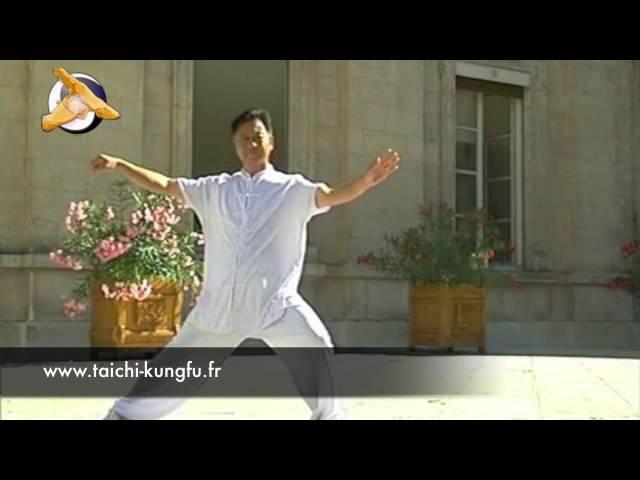 Zheng Xudong - Tai Chi style Chen Laojia 16-32 Mouvements [陈氏太极拳老架 Taijiquan style Chen]