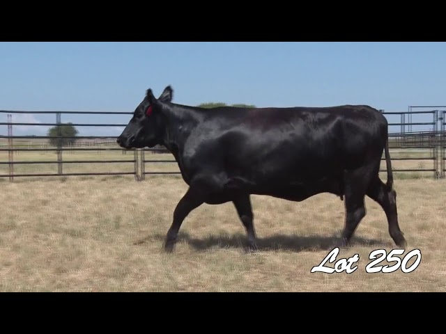 Pollard Farms Lot 250