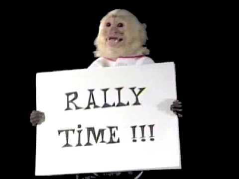 Image result for rally monkey pics