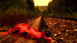 Autumn Leaves Patricia Kaas