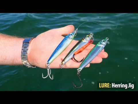 How To: Hogy Herring Jig