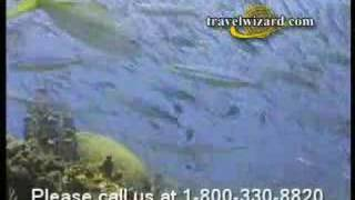 SeaDream Cruise Vacations and Seadream Cruise Tours, video