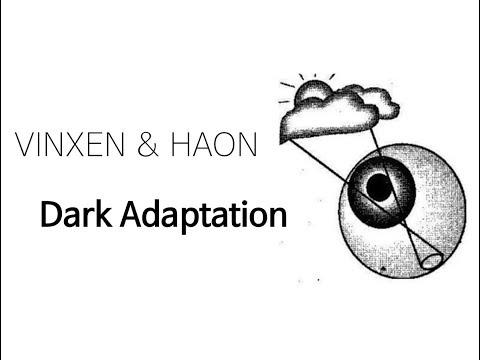 빈첸 - 암순응 ( 빈첸 & 하온만 있는 버전 )  / Vinxen & Haon - Dark Adaptation (eng sub)