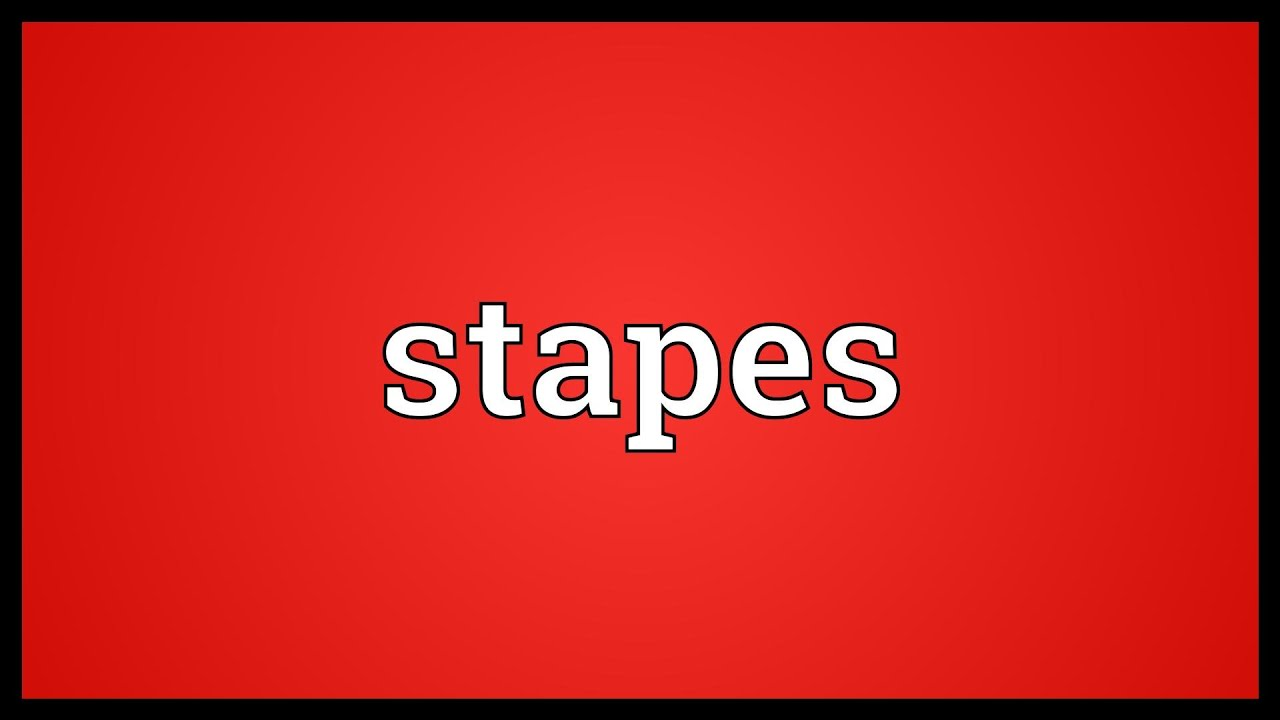 Stapes Meaning Youtube