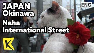 k japan travel okinawa 일본 여행 오키나와 기적의 1마일 나하 국제거리 naha international street