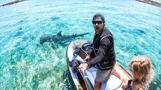 I GOT A BRAND NEW JET SKI Sea Doo Fish Pro 2019 Review   Hammerhead Shark & Ship Wreck - Ep 63