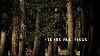 Mind The Wires - Tears Run Rings