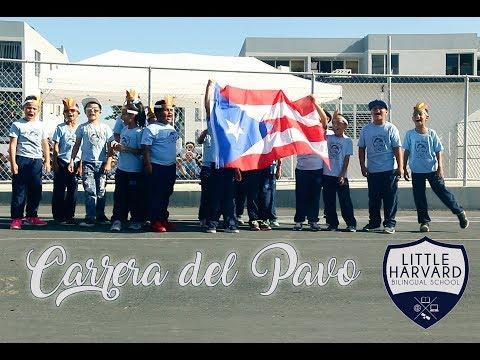 Carrera Del Pavo 2017   LHS